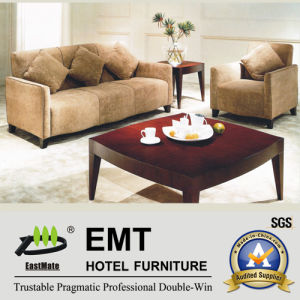 Modern Furniture Nice Hotel Living Room Sofa Set (EMT-SF10) pictures & photos