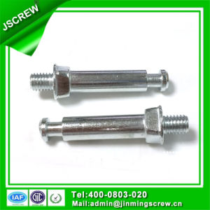 Custom High Accuracy Round Head Hollow Screw for Auto Spare Parts pictures & photos
