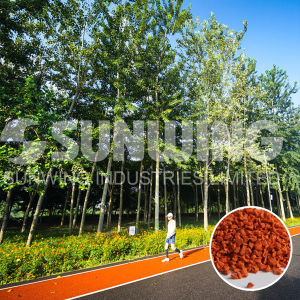Top Quality EPDM Rubber Granules for Flooring Surface pictures & photos