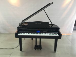 88 Keys Hammer Action Touch Sensitive Digital Grand Piano Keyboard pictures & photos