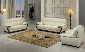 Living Room Sofas, Leather Couch pictures & photos