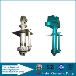 Sp 4 Inch Vertical Chemical Resistant Single Stage Slurry Sea Pump pictures & photos