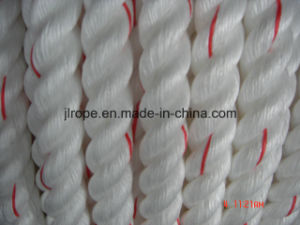 Danline / High Performance Mooring Rope pictures & photos