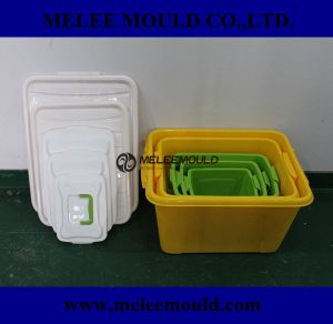 Plastik Tooling for Container Box Mold in Moulding pictures & photos