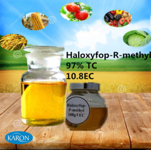 High Quality Herbicide Product of Haloxyfop-R-Methyl
