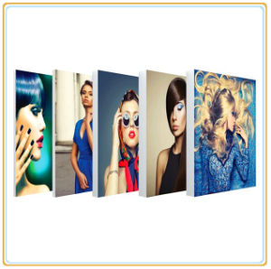 Colorful Printing Fabric Graphic Light Box for Poster Display (A1) pictures & photos