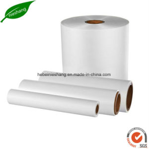 Corona Treated BOPP Thermal Laminating Film BOPP Printing Film pictures & photos