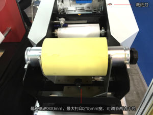 Color Label Printer Hy-S001 pictures & photos