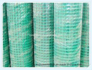 Welded Wire Mesh Panel for Construction pictures & photos