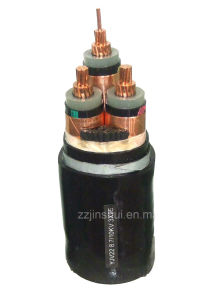 1.0.6/1kV XLPE INSULATED POWER CABLE pictures & photos