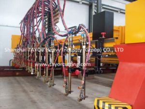 CNC Gantry Gas Cutting Torch pictures & photos
