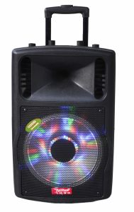 12 Inch Function Trolley Speaker with Mini Bluetooth Battery F78d pictures & photos