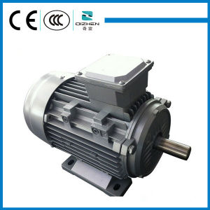 MS Series Three Phase Induction Motor with Aluminium Body pictures & photos