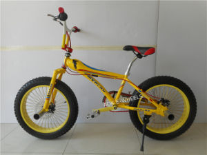"20""Mini Free Style BMX Bike with Disk Brake (AOK-BMX005) pictures & photos"