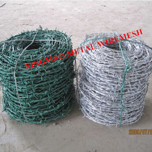2.5mm PVC Coated/Galvanized Barbed Iron Wire (XM-P) pictures & photos