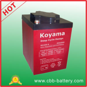 Deep Cycle Marine Battery 6V 225ah pictures & photos