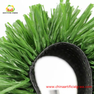 Artificial Football Grass with Fibrillated Yarn with SGS Certification pictures & photos