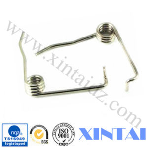 China High Quality Different Shape Spring pictures & photos