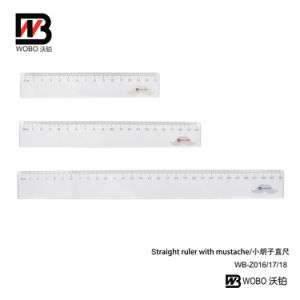 15 20 30cm Student Plastic Geometry Ruler Set for Office Stationery pictures & photos
