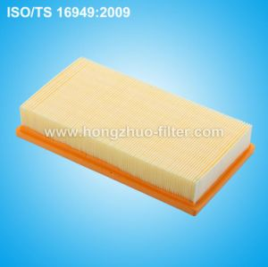 1072246 Air Filter pictures & photos