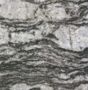 Polished Muticolor White Granite Slabs for Flooring (YQG-GS1012) pictures & photos