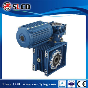 Wj (NMRV) Series Hollow Shaft Worm Gear Motors for Machine pictures & photos