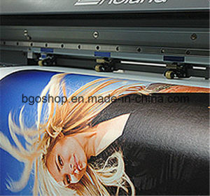 "Stretched Canvas Printing Canvas Screen Printing (20""X40"" 3.8cm) pictures & photos"