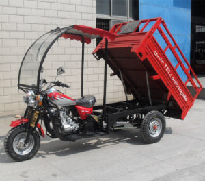 New Design 150cc 200cc Gas Three Wheel Motorcycle with Cab pictures & photos