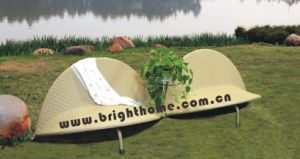 Special Design Wicker Rattan Lounge Outdoor Furniture Bp-219 pictures & photos