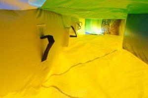 Despicable Me Minions Inflatable Bouncer Combo Carton Bouncer (chb590) pictures & photos