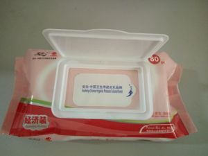 OEM/ODM Baby Wipes 80sheets Economic Packing pictures & photos
