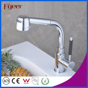 Fyeer Flexible Hose for Kitchen Faucet with Pull out Spray pictures & photos