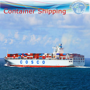 Sea Logistic Service, Ocean Freight Container Shipping Agent (FCL 20′′40′′) pictures & photos