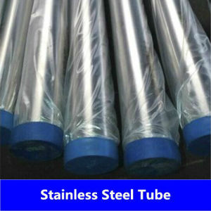 China Seamless Stainless Steel Pipe/Tube (310 310S)
