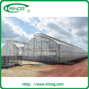 EU Model Film Multi-Span Greenhouse\ equipted with complete system pictures & photos