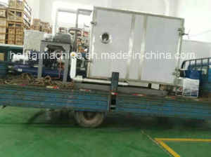 Vacuum Freeze Drying Machine for Fruits with Ce Certificates pictures & photos