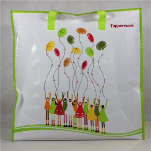 Cheap Reusable PP Woven Shopping Bags with Zipper (MECO145) pictures & photos