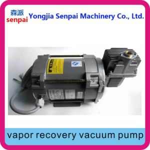 380V/220V Single-End Vapor Recovery Pump Vacuum Pump pictures & photos