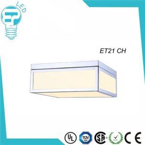 Simple Square Glass Ceiling Light Et21 Chrome pictures & photos