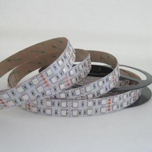 SMD5050 120LEDs/M LED Flexible Strips