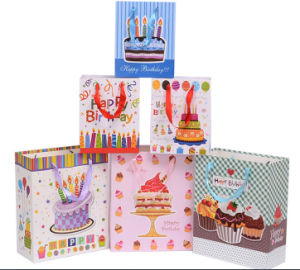 Fancy Printing Birthday Gift Bags (PB-011) pictures & photos