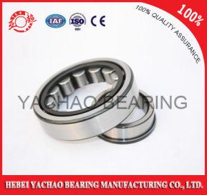 Cylindrical Roller Bearing (N419 Nj419 NF419 Nup419 Nu419)