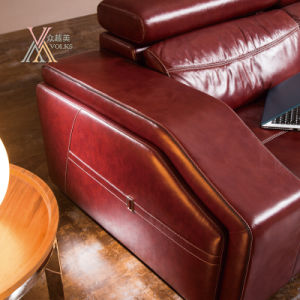 Red Leather Sofa (828) pictures & photos
