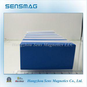 Permanent N52 Nickel Neodymium Block Magnet pictures & photos