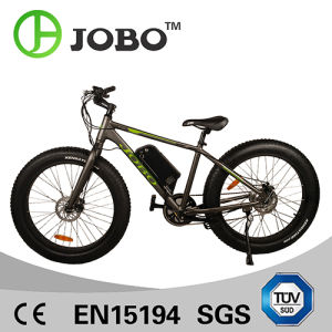 8fun Motor 500W Electric Snow Bike Beach Bicycle (JB-TDE00Z) pictures & photos