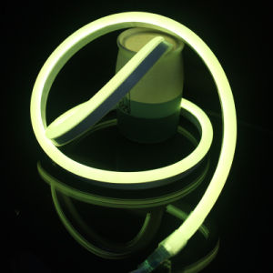 LED Neon Flex Waterproof with High Quality pictures & photos