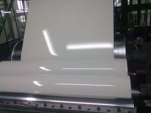 Steel Coil/PPGI Steel Coil/PPGI pictures & photos