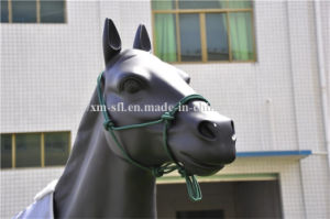 PP Utility Horse Equipment Horse Halter pictures & photos