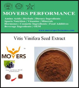 High Quality Plant Extract Vitis Vinifera Seed Extract pictures & photos