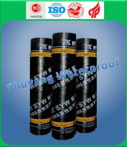 High Quality 4mm Sbs PE PE Waterproof Membrane pictures & photos